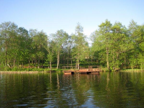 Озеро в солнечный день