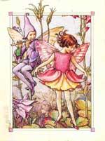 Эльф и фея