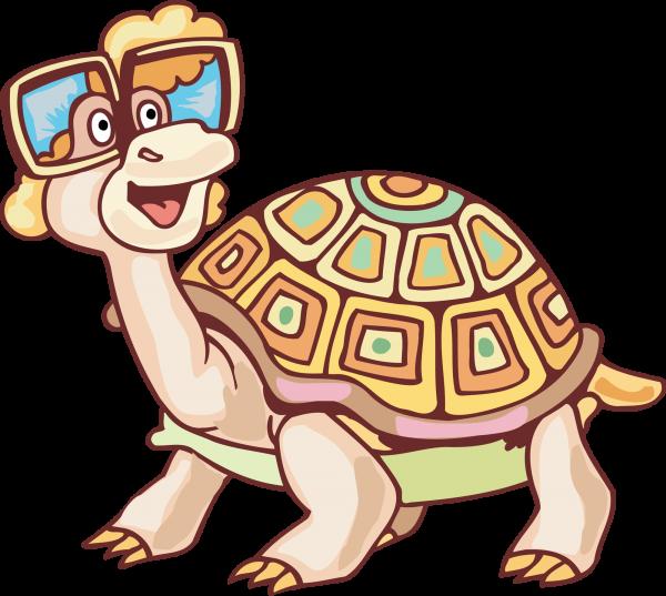 Клипарт Черепахи. Векторный клипарт с прозрачностью