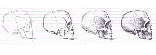 рисуем череп